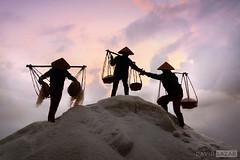 Salt Farmers (David_Lazar) Tags: vietnam salt saltfamers honkhoi doclet sunrise