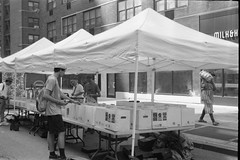 LPs (je245) Tags: kodaksignet35 kodakektar44mmf35 kodak px125 diafine nyc newyork lps records streetfair