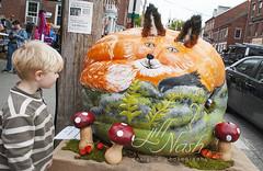 Woodland fox pumpkin (grilljam) Tags: pumpkinfest damariscotta autumn october2016 seamus 4yrs woodlandfox mushrooms gnomes