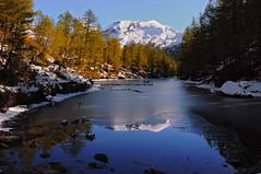 Prima neve.. (enniovanzan) Tags: neve alpeveglia ossola