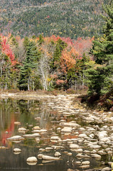 Lily Pond, Kancamagus Highway (alohadave) Tags: autumn fall kancamagushighway lilypond newhampshire northamerica pentaxk5 places pond season unitedstates water smcpda60250mmf4edifsdm