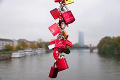 Padlocks, Eiserner Steg, Frankfurt, Germany (rmk2112rmk) Tags: padlocks eisernersteg frankfurt germany eiserner main rivermain bridge dof bokeh