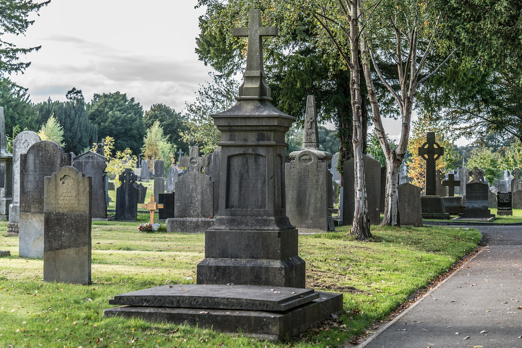 A QUICK VISIT TO GLASNEVIN CEMETERY[SONY F2.8 70-200 GM LENS]-122056