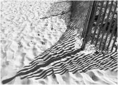 Beach Shadows -BW  84/100 (Firery Broome) Tags: sand fence shadows lines pattern stilllife nature naturelovers naturetakesover earthnature cellphone phonephoto iphone iphoneography iphone5s phoneography ipad ipaddarkroom apps snapseed fotograf blackandwhite blackwhite bw monochrome abstract abstractnature artofnature blackandwhitenature blackandwhitestilllife 100x2016 100xthe2016edition image84100 iphonenature beach sandpattern capehenlopen delaware lewes statepark delawarenature everydayobject 365
