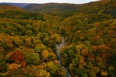 201610173888 (Gansan00) Tags: sony ilce7rm2 japan aomori hakkoda landscape      10