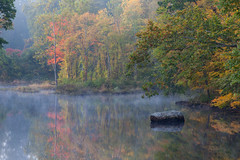 muted morning in Explore (t s george) Tags: newengland fall autumn color fog mist peaceful canon5dmarkii millersriver gillma