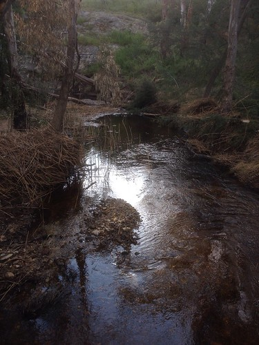 Campbells Creek, Castlemaine