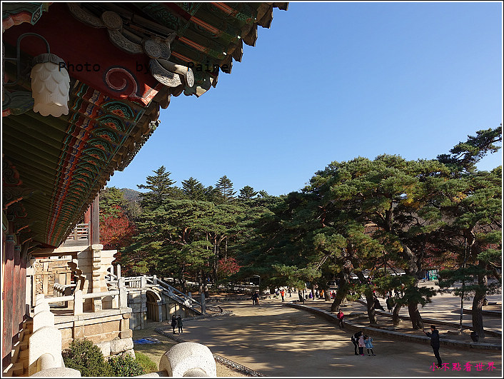 慶州佛國寺 (59).JPG