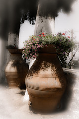 Large pottery (vale0065) Tags: kreta klooster aardewerk potten pottery abdij flowers bloemen crete greece griekenland island eiland moni kardiotissas monikardiotissas kerakardiotissamonastery monastery abbey travel reis holiday vacation vakantie mediterranean