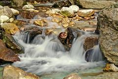Lungo il torrente (Darea62) Tags: altissimo versilia azzano stream river water falls seravezza creek alpiapuane malbacco