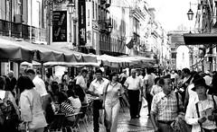 (mgkm photography) Tags: street travel urban bw tourism portugal calle nikon lisboa lisbon streetphotography gimp linux streetphoto rua ruaaugusta lissabon pretoebranco blackandwhitephotography streetshot urbanphotography travelphotography lisboetas monochromephotography lisboanarua blackwhitephotos opensourcephotography ilustrarportugal europeanphotography streettogs streettogs bnwportugal