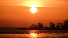 Birdwatchers platform (jarnasen) Tags: morning trees sky orange sun sunlight lake color nature water clouds sunrise march colorful fuji sweden outdoor schweden tripod natur silhouettes nopeople nordic sverige scandinavia fujinon risingsun roxen naturfoto svartn naturbild xt1 fujifilmxt1 xc50230mmf4567 jarnasen jrnsen