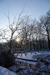 jour de neige (fabonthemoon) Tags: park brussels snow ice sneeuw bruxelles neige brussel parc jubelpark parcducinquantenaire glace ijs