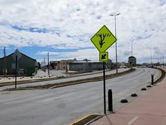 Puerto Montt / Punta Arenas-6