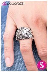 502_ring-silverkit2april-box03