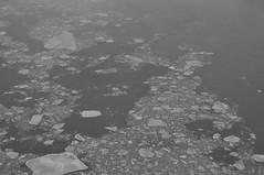 DSC_0625 (David.Sankey) Tags: newyorkcity ice queens eastriver rooseveltisland longislandcity queensboroughbridge
