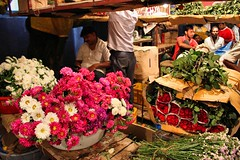 Dadar Flower Market / 13 (mariannaF) Tags: city travel flowers india flower asia market culture streetphotography documentary explore bombay mumbai flowermarket wholesale reportage dadar southasia travelphotography