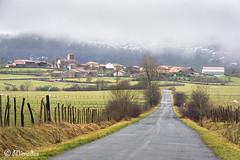 country road  towards Unza village (Mimadeo) Tags: road mountain mountains fog rural landscape village sheep foggy lane alava euskadi basquecountry countryroad paisvasco unza unzaga