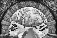 New York - Central Park - Tunnel (SuperPaolo) Tags: park new york usa ny building skyline canon river lens island big downtown cityscape cloudy ellis centralpark manhattan district central large tunnel center fisheye midtown american 7d coastline hudson lower 8mm lente financial f35 aspherical samyang canon7d asferica samyangfisheye8mmf35