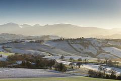 Nevicata (Massimo Feliziani) Tags: sunset sun snow landscape tramonto day ray snowy campagna neve rays sole inverno marche paesaggio controluce colline raggi italiano nevicata raggio regione sibillini marchigiano marchigiana