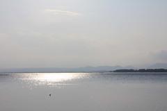 (Yorozuna / ) Tags: lake reflection japan shiga biwako watersurface  makino  takashima lakebiwa       lakesurface    kaidu  kaiduosaki