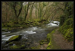 Green & Black (Explored) (RattyBoots) Tags: green beautiful canon flow woods rapids 7d beautyspot lynmouth watersmeet exmoor polariser canon1022 riverlyn