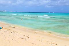 Aruba 2016 (Lee Armstrong Jones) Tags: aruba caribean holiday beach sky sea paradise nature ocean canon 5d mkiii sunset beautiful vacation ilovearuba dutch island sand bluesea 24105mm 100400mm tree flickrtravelaward caribbean arubacaribeanholidaybeachskyseaparadisenatureoceancanon5dmkiiisunsetbeautifulvacationilovearubadutchislandsandbluesea24105mm100400mmtreedruifdruifbeachtamarijnflickrtravelaward blue treeflickrtravelaward caribbeanholiday