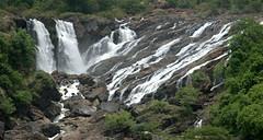 Barachukki Falls (VinayakH) Tags: barachukkifalls shivanasamudram karnataka india kaveririver river waterfalls chamarajanagar