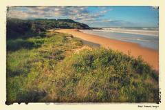 Back Beach Black Head, Hallidays Point, NSW (mypix4u2c) Tags: beach australia nsw blackhead tuncurry hallidayspoint midnorthcoast australianbeaches backbeachblackhead stylisedphotoeffects stylisedphoto stylisedphotos