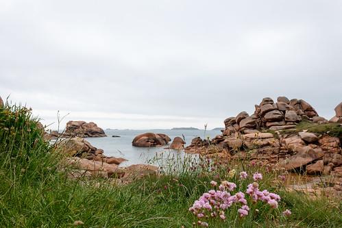 Côte de Granit Rose à Ploumanac'h
