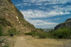 DSC03181 (Braulio Gmez) Tags: barrancadehuentitn biodiversidad caminoamascuala canyon canyonhuentitan faunayflora floresyplantas guadalajara jalisco mountainrange naturaleza sierra senderismo paisaje barrancadehuentitn barranca huentitn ixtlahuacandelro mxico guardianesdelabarranca