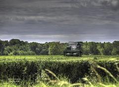 Charleston Tea Harvester (GloriaOcch) Tags: tea southcarolina charleston plantation harvester teaplantation