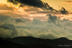 Over the clouds. (Bouhsina Photography) Tags: ciel montagnes oiseaux clouds sky birds mountains sunset coucher soleil ttouan tetuan maroc morocco bouhsina bouhsinaphotography canon 5diii ef100400ii silhouette greatphotographer wow