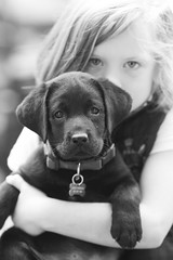 Bucky (Thomas Hawk) Tags: bucky california usa unitedstates unitedstatesofamerica bw dog labrador puppy