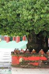 Shwemawdaw Pagoda (Verte Ruelle) Tags: burma birma yangon myanmar asia urban streetphotography downtown sunday girl girls asian rangoon southeastasia streetlife buddhism buddha religion tourism vacation holiday naypyitaw