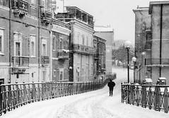 I am legend (6937) (MattRAGO) Tags: snow ice alone solo neve tormenta matteo freddo solitario tristezza ghiaccio fatica 2014 solitudine bufera montesantangelo rago mattrago matteorago