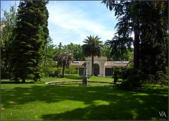 Royal Botanical Garden (Madrid, Spain) / Real Jardin Botanico de Madrid (Trensamiro) Tags: madrid blue light espaa plant flower tree verde green planta luz beautiful azul garden real botanical arbol lumix spain outdoor events flor royal wideangle super palm panasonic greenhouse va restored handheld pavilion hermoso angular palmera available jardn 25mm pulso eventos villanueva granangular botnico herbario herbarium airelibre invernadero pabelln disponible restaurado emblematic tz7 emblemtico zs3 trensamiro