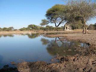 Botswana Hunting Safari 54