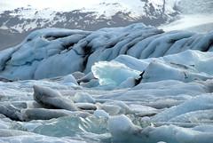 Huge Ice sheets at Jokulsarlon (VinayakH) Tags: nationalpark lagoon glacier iceberg naturalwonder jkulsrln skaftafell glacierlagoon glaciallake hfn southeasticeland breiamerkurjkullglacier vatnajkullnationalpark