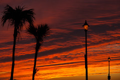 Autumn Sunset (Cissa Rego) Tags: uk autumn sunset england sky seascape colour art nature museum clouds landscape lights seaside nikon d70s palmtree dorset bournemouth bournemouthpier russellcotes