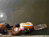 La pesca del día (Alveart) Tags: colombia cordoba latinoamerica caribe suramerica lorica islafuerte regioncaribe alveart luisalveart santacruzdelorica pueblopatrimonio sinuislafuerte