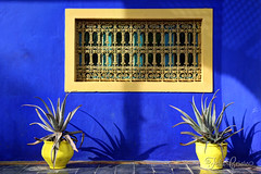 Morocco (Felix Cesare) Tags: africa old blue red art texture colors sign yellow canon vintage square ceramic design healthy ceramics pattern colours market northafrica blu muslim islam markets style arabic agadir morocco stop arab yamaha marrakech souk casablanca motor marrakesh oranges tradition snails souks paprika essaouira safran fes tajin rabat riad jamaaelfna tagine 70d yellowyamaha arabicwords riads arabics canon700d arabictiles marokk