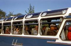 1956 Holland (mybelair62) Tags: holland bus hague 1950s 1956