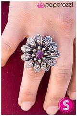 1057_ring-purplekit1april-box04