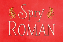 Spry1CM (Stephen Rapp) Tags: font lettering calligraphy