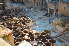 Tannery (Victoria Lea B) Tags: leather work morocco medina fes tannery