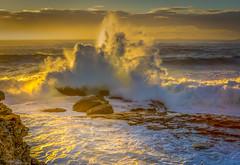 509A2219 - Wollongong Beach Southern NSW Australia (Gil Feb 11) Tags: australia newsouthwales wollongong