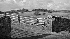 Holwick . (wayman2011) Tags: trees canon gates oldbuildings farms drystonewalls dales pennines countydurham teesdale bwlandscapes holwick canon50d shootinglodges