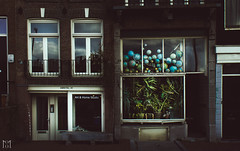 Globe (Minhson Nguyen) Tags: street plant window amsterdam private cool globe weed showcase vitrine trotter