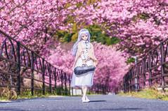 new season (AZURE_TB) Tags: spring sony sakura tamron 272e  dollfiedream   nex6 dd